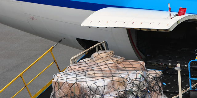airfreight-logistics